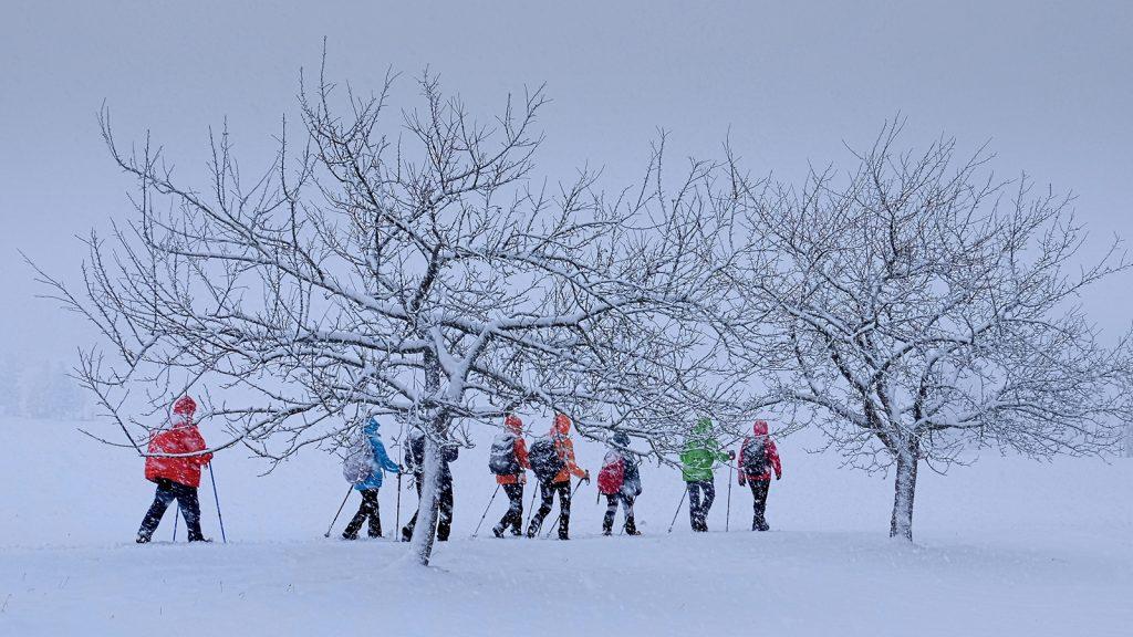 39-31_Winterwanderung
